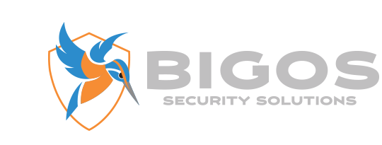 Bigos Security Solutions LLC